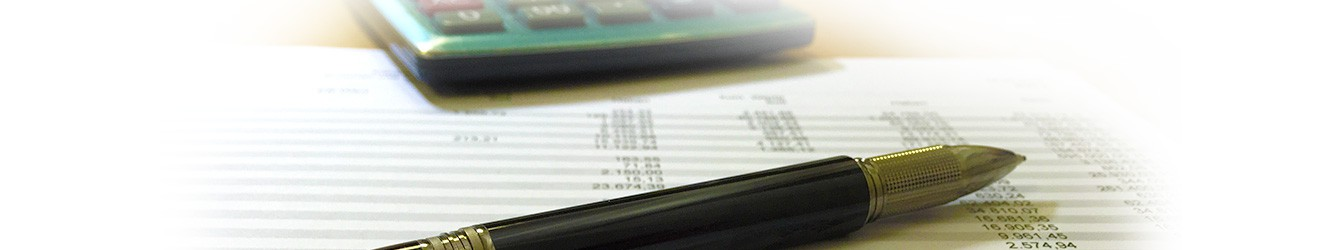 Wirtschaftsberatung, Finanzbuchführung und Lohnbuchführung